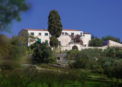 Visita esperienziale in Masseria